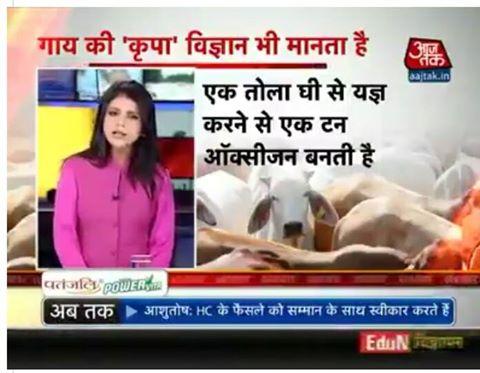 shweta-singh-cow-news
