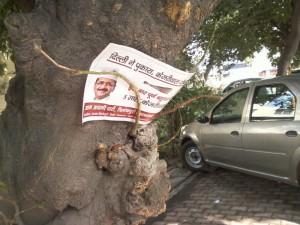 पेड़ पर लटकर या सड़क पर लेटकर चुनाव प्रचार करने नहीं चूकता आम आदमी